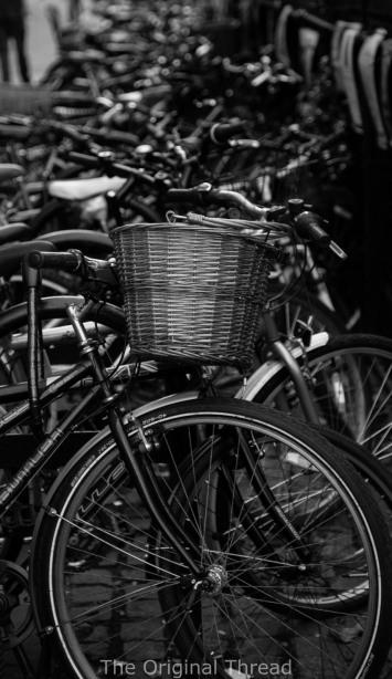 Bike1 (1 of 1)
