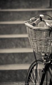 Bike2 (1 of 1)