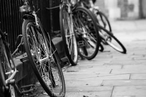 bikes4 (1 of 1)