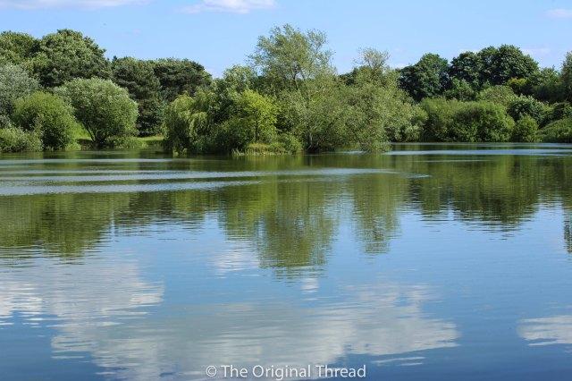 Tingrith Lakes 4